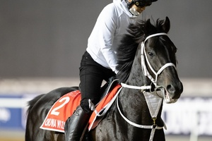 Group 1 $12m Dubai World Cup Sponsored By Emirates Airline