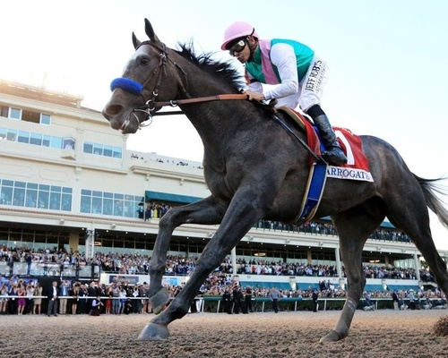 Counting Down To 25 - Arrogate Wins The Twenty Second Running Of The Dubai World Cup In 2017