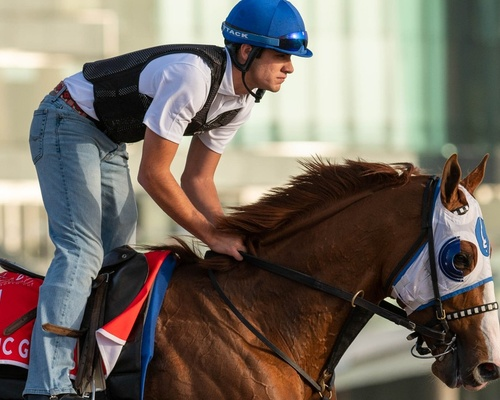 Friday Track Notes Group 1 $12m Dubai World Cup Sponsored By Emirates Airline