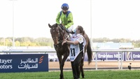 Review: $750,000 Dubai Gold Cup Gr.2 ( Horses, Racecard, Video 2021)