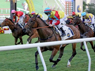 Richard Gibson praises mafoo as Wellington makes triumphant  ... Image 1