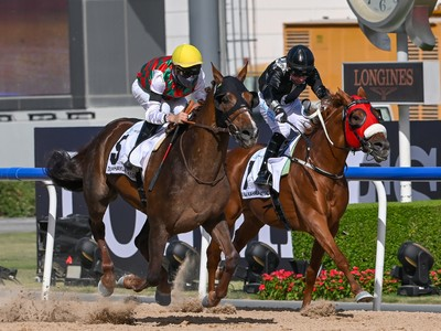 Review: French-Bred Deryan Takes Home Gr.1 Dubai Kahayla Cla ...