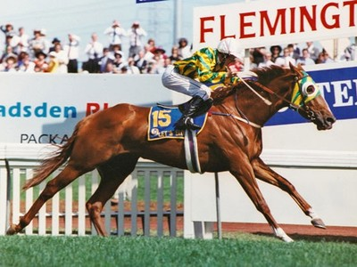 Let's Elope To Be Inducted Into The NZ Hall of Fame In May 2 ...