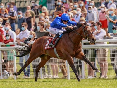 Darley Australia Adds Four First-Season Champions To Gr.1 Ro ...