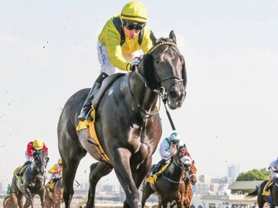 Boerhan Wins Sole Thoroughbred Feature In Abu Dhabi Image 1